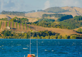 Fishing boat and landscape near Mangonui, Northland Region, New Zealand