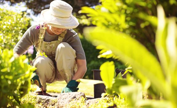 Senior woman with gardening tool working in her backyard garden.