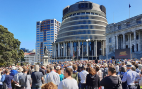 Crowds gather at Parliament to celebrate RNZ Concert.