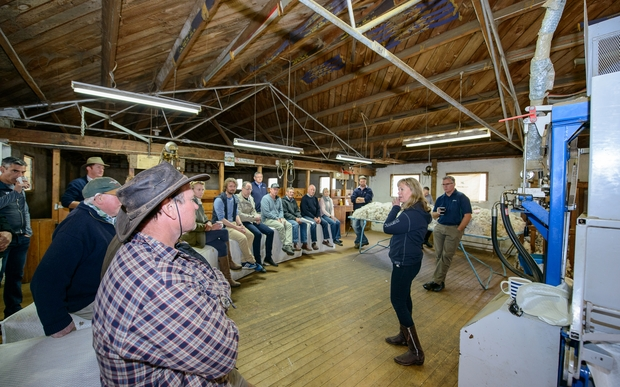 The chief executive of Norway's Devold clothing company, Cathrine Stange, talks to Ranfurly merino farmers in Armidale stud's wool shed about the philosophy of sheep to shop.