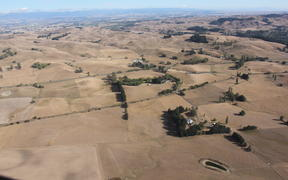 Conditions during the Hawke's Bay drought 2013.