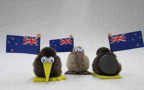 A kiwi toy from Rozcraft in Rotorua.