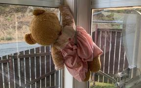 People are putting teddy bears in their windows for kids to see as they walk past.