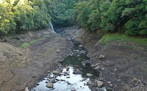 The water level is low in the creek leading into Upper Nihotupu Dam.