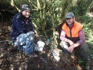 Brendon Cross and Rik Wilson setting a possum poison bait station