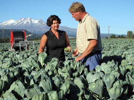Brussels sprouts growers Bruce and Steph Rollinson.