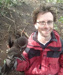 James Russell with a grey-faced petrel