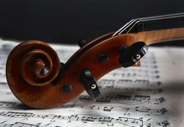 violin RNZ / Diego