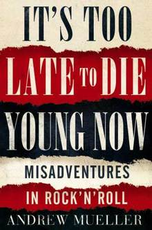 Cover of It's too late to die young by Andrew Mueller