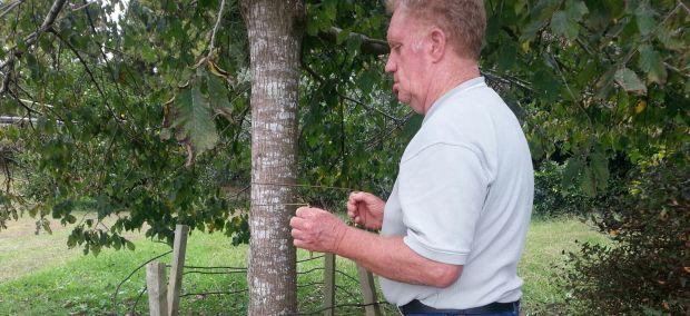Dairy Dowsing Ren Ellett dowsing in his garden c Alison Ellett