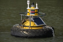Estuarine monitoring bouy in the tidal reaches of the Hoteo River