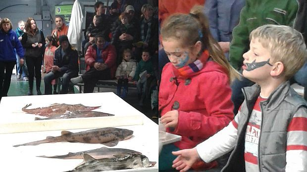 Young shark fans at a public shark dissection