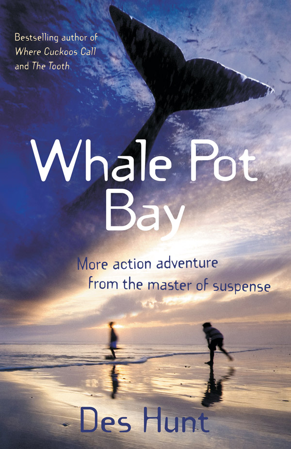 Image result for whale pot bay summary