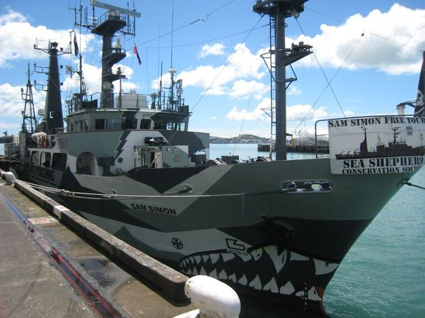 The Sam Simon berthed alongside Princes Wharf in Auckland RNZ Lisa Thompson