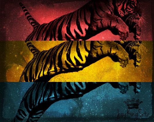 Jumping Tiger CC BY AN Exseada