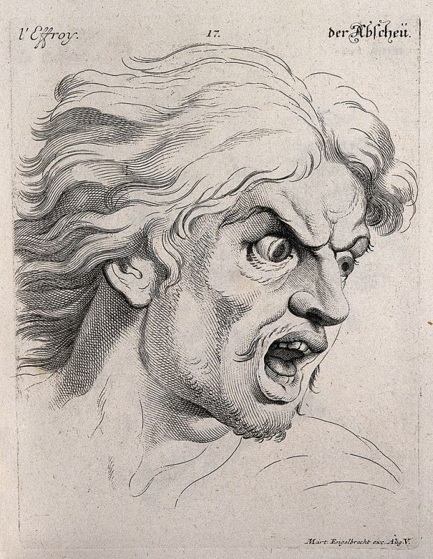 The face of a man experiencing fear Engraving by M Engelbrecht After C Le Brun CC BY Wellcome Library London