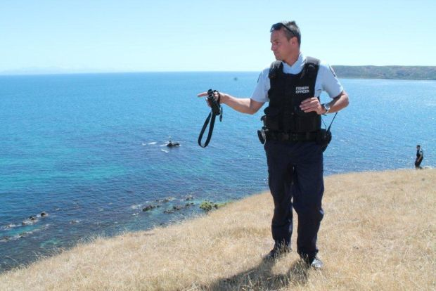 Pointing to coastline plundered by poachers