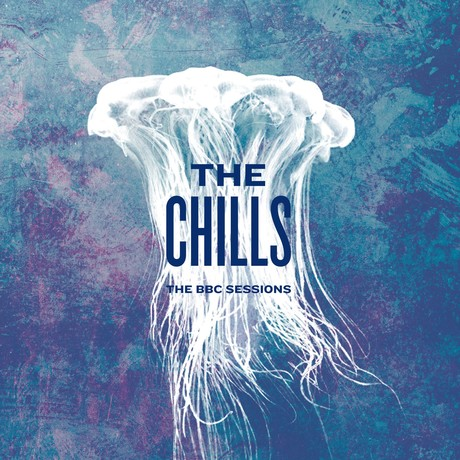 the chills bbc sessions