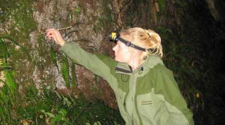 Miriam Sharpe collecting glow worms