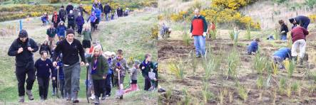 Keen volunteeers head to the planting site, and the wetland area planted out in some of the 10,000 new plants