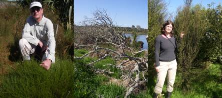 Bruce Clarkson with Empodisma minor plant, dead gray willows on lake margin, and Toni Cornes with thriving 4-year old trees