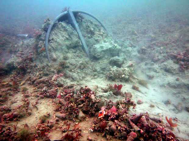Anchor dragged along the seabed - photo by Rob Davidson