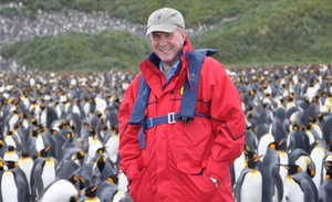 simon with penguins