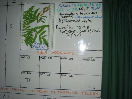 Kiwi White board keeps track of weeds and wildlife small