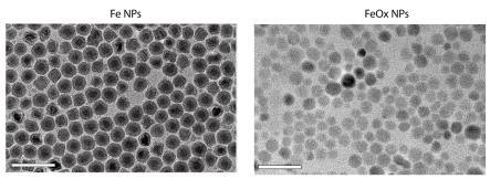 Magenetic Iron nanoparticles