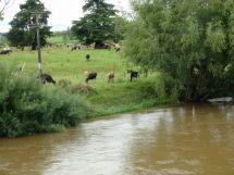 Norhtland water