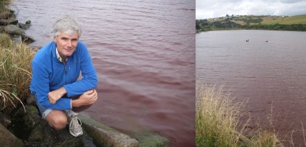 Marc Schallenberg at Tomahawk lagoon which is red from an algae bloom