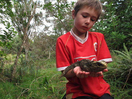 A boy and a tuatara