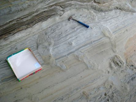 Dinosaur prints and the mould setting