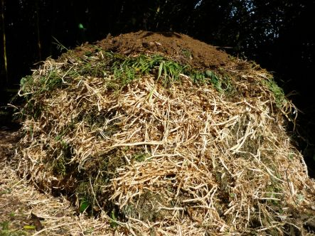compost the final pile with a soil lid