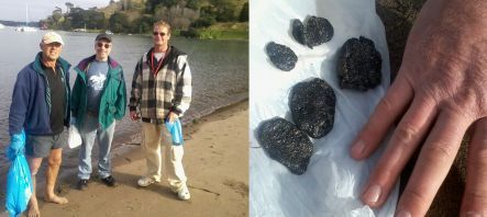 Beach clean volunteers Leigh Pettigrew, Gary Meltzer and Vince Bethell, and oil collected from the beach in mid-June