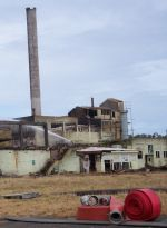 Patea meatworks after the February fire that released asbestos in to the atomosphere