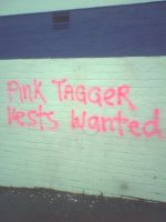 Wellington taggers mock the council's