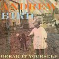 andrew bird break yourself