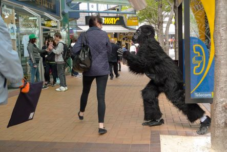 Gorilla frightens lady.