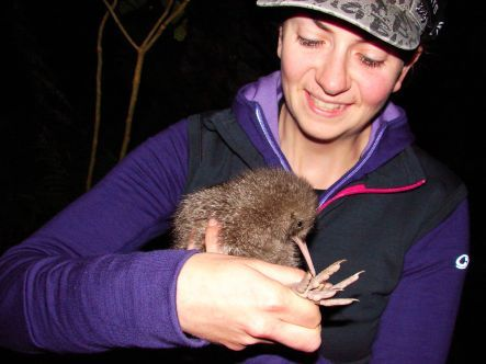 Helen Taylot and little spotted kiwi chick