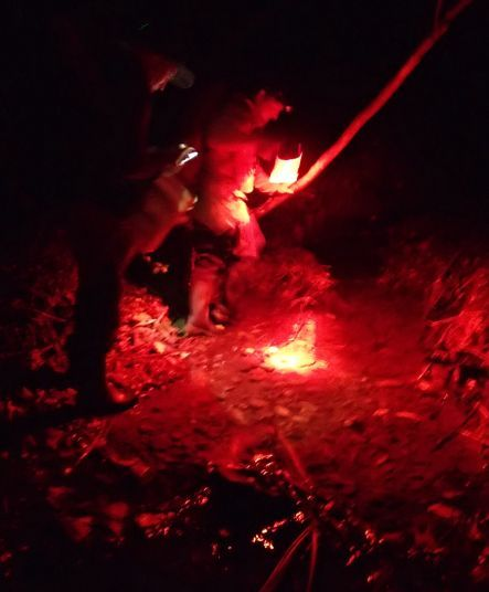 Night fishing at Zealanida with a red spotlight