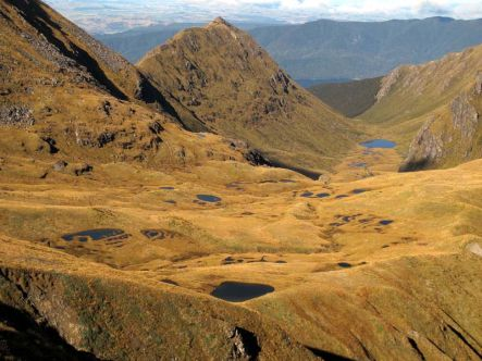 View of tussocklands and tarns from the summit of Mt Burns near the Borland Road Fiordland
