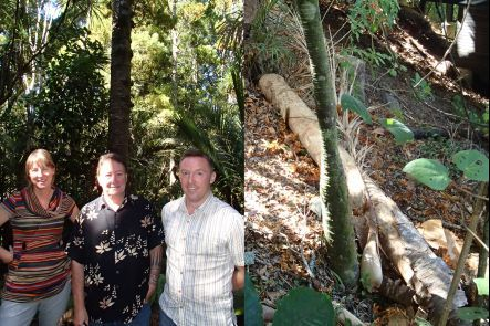 Diane Blomfield, Chris McBride and Nick Waipara, and a felled kauri at Colin McCahon House