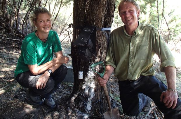 Sam Brown and John Williams next to a possum trap that is being monitored to see if urine from a female possum in oestrus is an effective lure