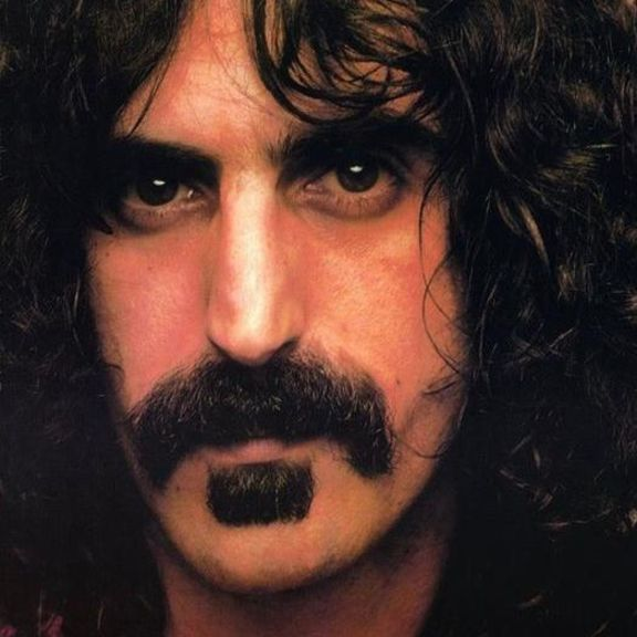 Small frank zappa the radio is broken sq
