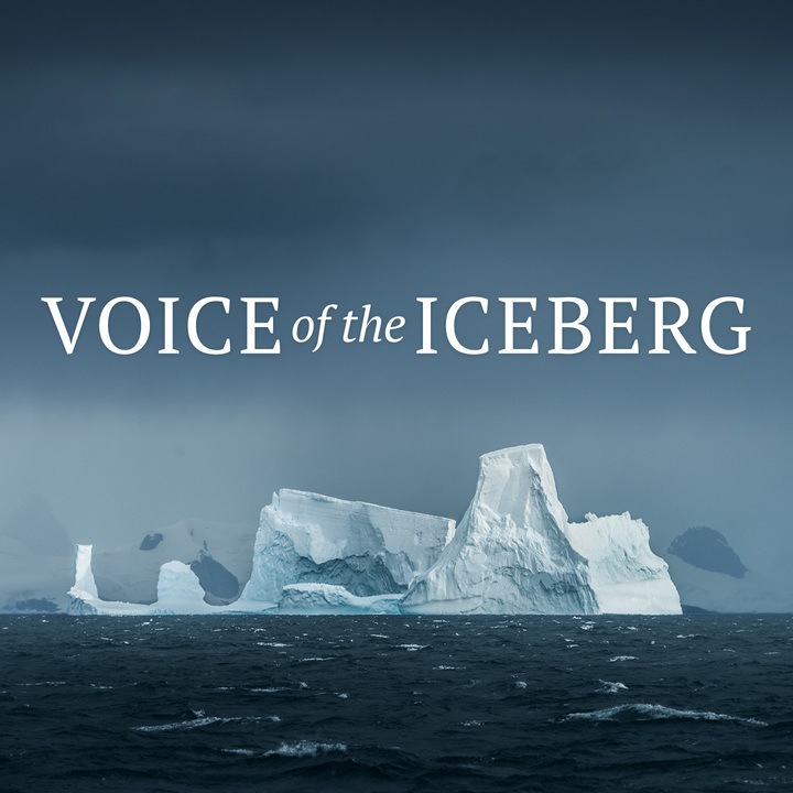 Medium rnz voice of the iceberg sq