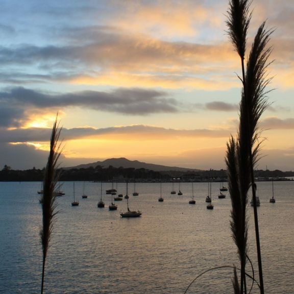 Small daybreak sq 1 rangitoto 1347187