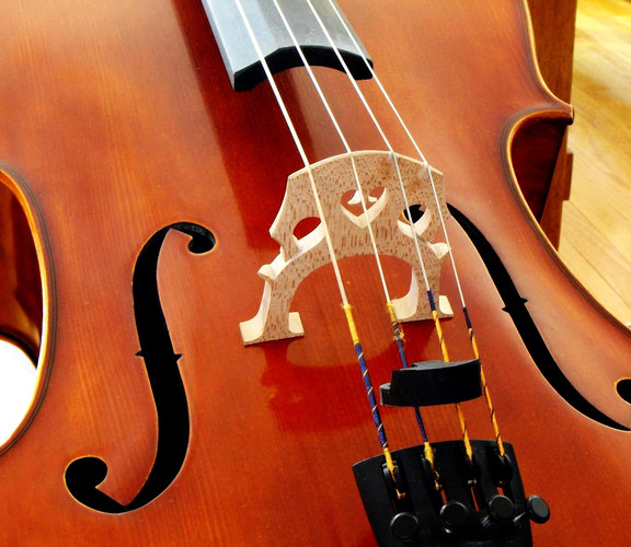 Photo for For love of the ... cello